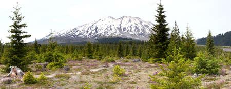 helens: Mount Saint Helens