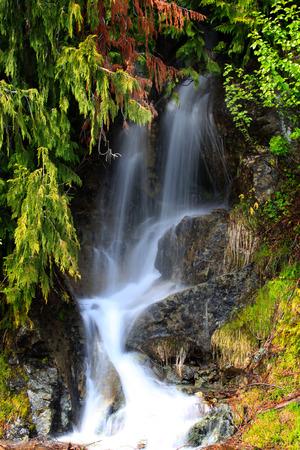 snow falls: Beautiful water falls in Mount Rainier national park