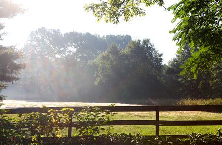 Early morning sun rays Foto de archivo