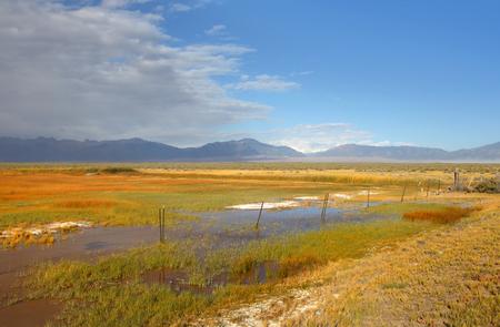 콜로라도 주 연못과 초원 풍경