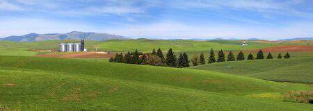 hiils: Farm landscape