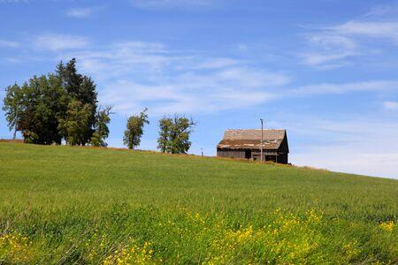 hiils: American farm landscape