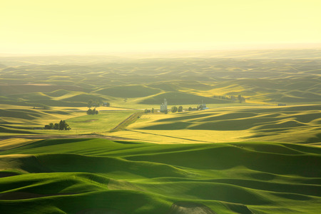 butte: Scenic landscape from Steptoe butte