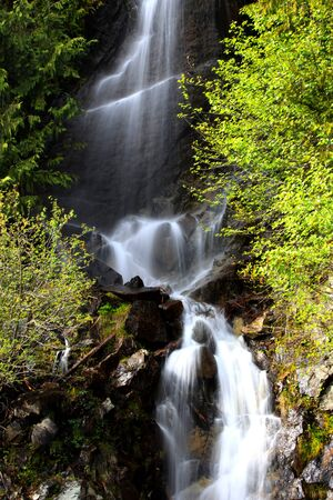 water falls in Mount Rainier national park