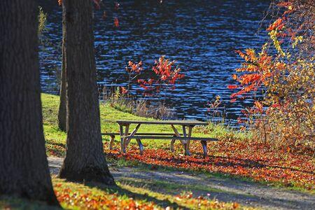 rise fall: Picnic table under beautiful autumn trees