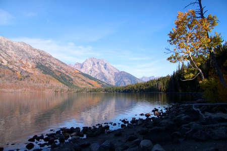 Jenny lake landscape Stok Fotoğraf