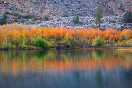 autumn color: Autumn reflection at Bishop creek canyon Stock Photo