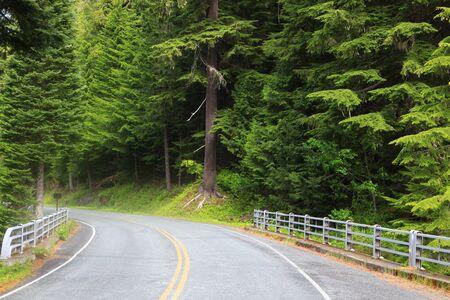 MOUNT RAINIER: Scenic drive in Mount Rainier national park Stock Photo