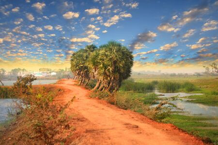 agriculture india: Rural landscape in Andhra Pradesh, India Stock Photo