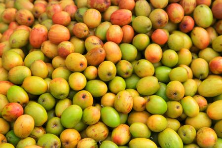 jujube fruits: Indian plums also known as Ziziphus mauritiana Stock Photo