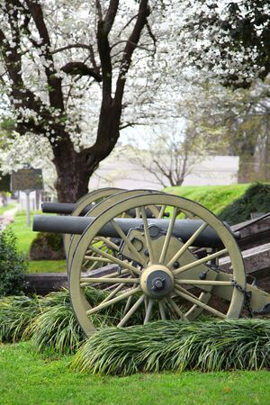 barrel bomb: Old Cannons in Natchez Mississippi under spring bloom