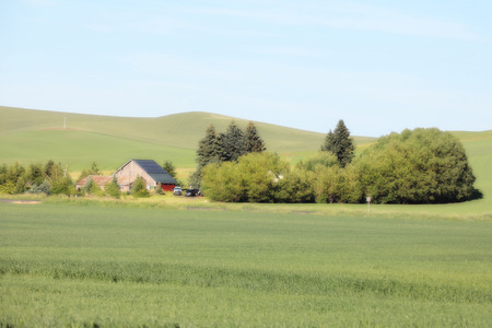 palouse: Palouse Washington state