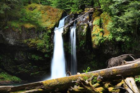 Mount Rainier water falls
