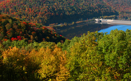 allegheny: Fall foliage in Allegheny national forest