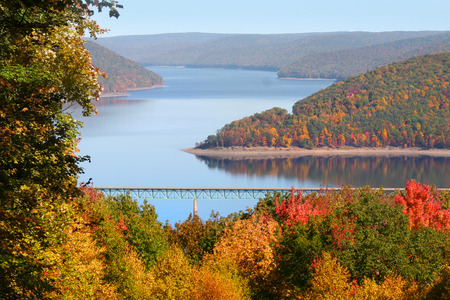 Fall foliage in Allegheny national forest