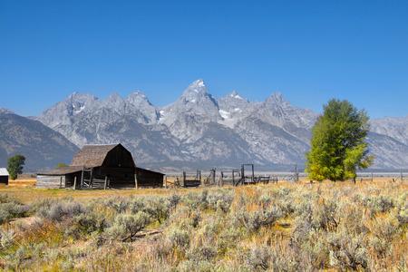 barns: Old Mormon barn in Grand Tetons