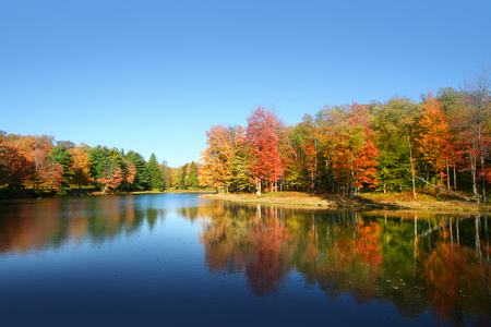 allegheny: Colorful autumn tree reflections in Allegheny national forest Stock Photo