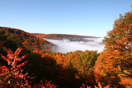 allegheny: Clouds on Allegheny national forest