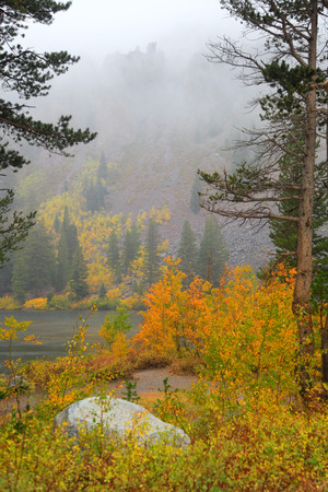 Sierra Nevada mountains morning fog in autumn time