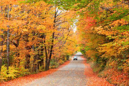 hampshire: Autumn drive in New Hampshire