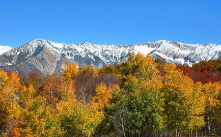swampy: Snow covered Colorado rocky mountains in autumn time