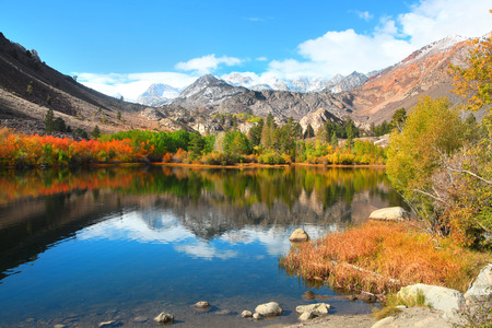 Fall colors near Sabrina lake ,Bishop California
