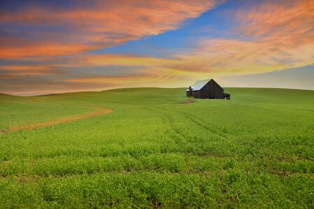 Scenic landscape in Rural Washington state