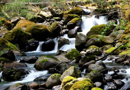 Small water falls in Mount Rainier national park