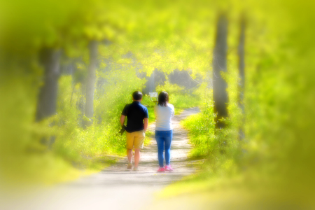 Back view of young couple walking in the park