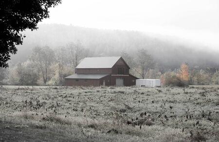 tree farming: Barn caught in fog in rural Vermont