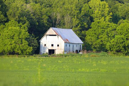 run down: White barn in summer time in rural Indiana