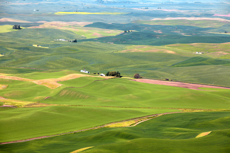 Aerial view of Palouse landscape from Steptoe butte Stock Photo