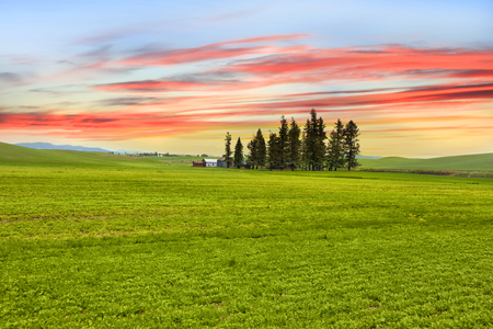 Palouse landscape with colorful sky background Stock Photo