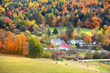 field maple: Scenic landscape near Corinth Vermont