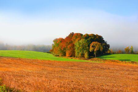 Vermont farm landscape in morning fog
