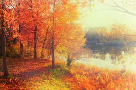 湖のそばの紅葉