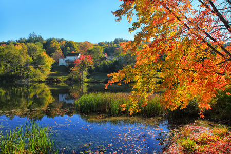 Colorful autumn trees over lake