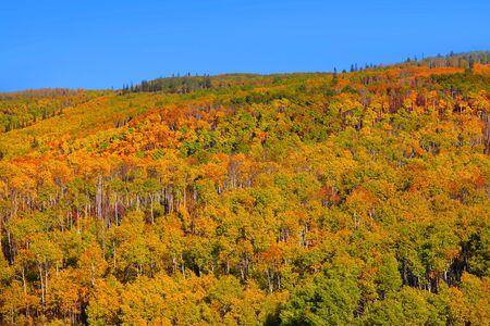 Scenic autumn landscape in Colorado Stock Photo