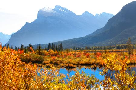 Vermilion lakes area at Banff national park Canada