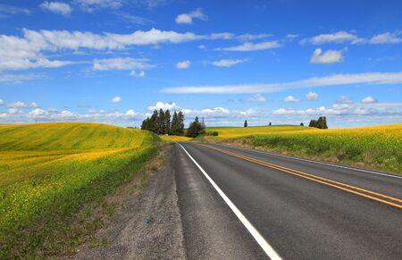 Scenic drive through Washington state rural fields