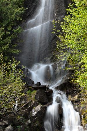 Water falls in Mount Rainier national park