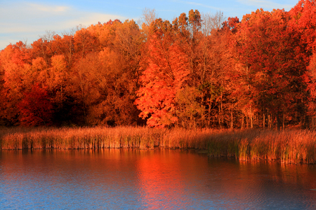 Autumn reflections in morning sun light