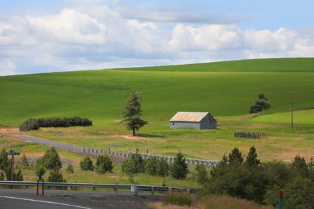Farm landscape in Palouse, Washington.