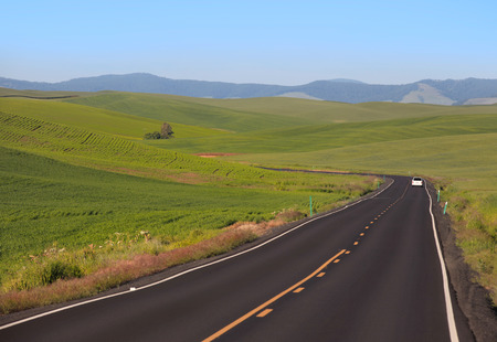 Scenic drive through farms of Palouse