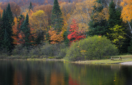 Autumn tree reflections at Lac Chat in Mont Tremblant national park