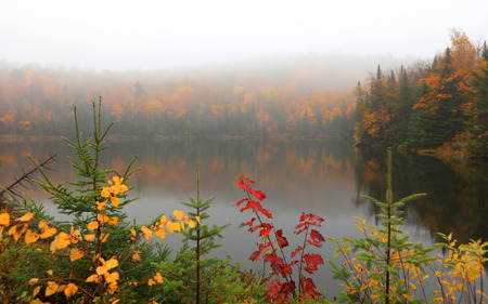 Misty landscape near Mont Tremblant in Quebec Stock Photo