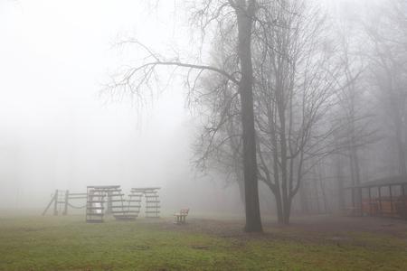 Misty morning scene in Michigan park