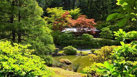 Beautiful Japanese garden landscape in Seattle Washington