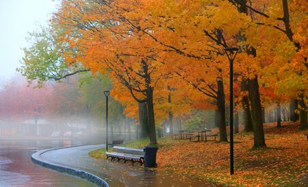 Mont Royal park in Montreal during autumn time Reklamní fotografie