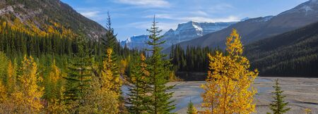 Panoramic view of Jasper national park landscape from Icefields parkway Stock Photo